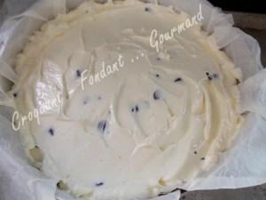 Cheesecake au chocolatDSCN2857_32581