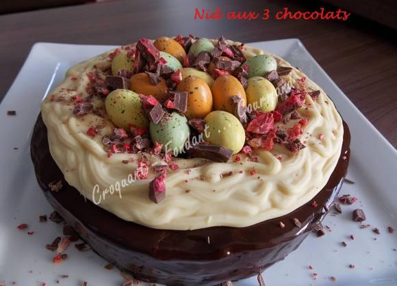 Nid aux 3 chocolats DSCN7402