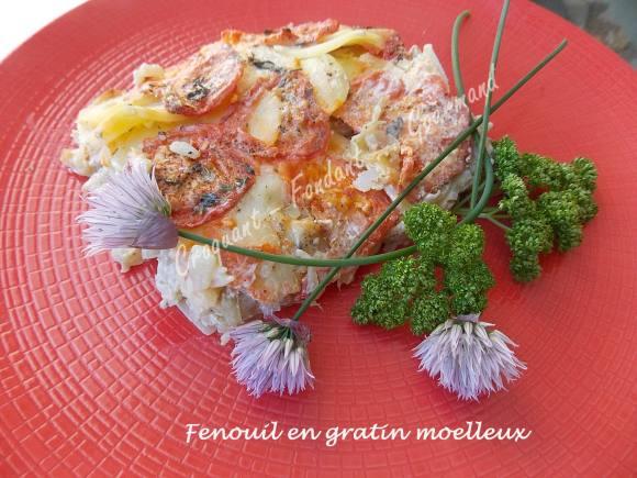 Fenouil en gratin moelleux DSCN7971