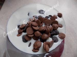 Tarte douce au chocolat DSCN1605_21483
