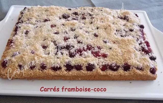 Carrés framboise-coco -DSCN3438_23308