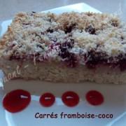 Carrés framboise-coco -DSCN3474_23344