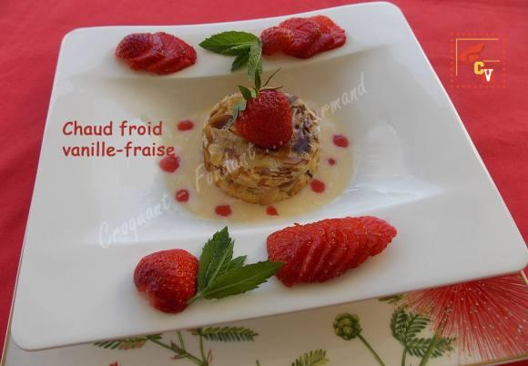 Chaud froid vanille-fraise CV DSCN8475