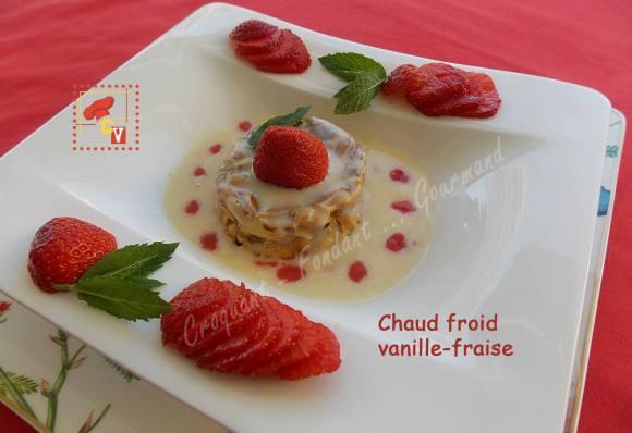 Chaud froid vanille-fraise CV DSCN8482