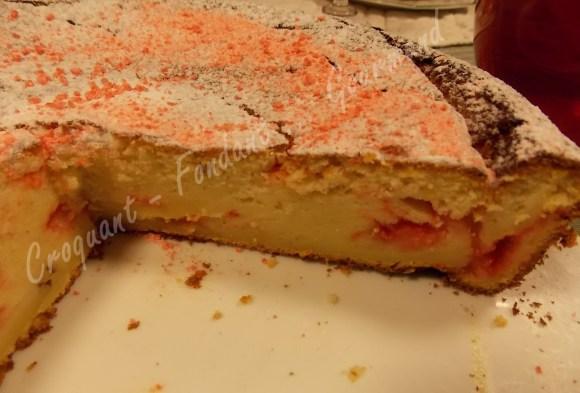 Gâteau rose au fromage blanc DSCN4383_24346