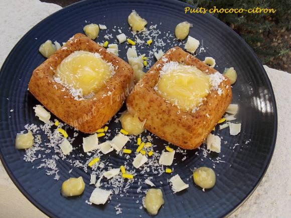 Puits chococo-citron ou fleur coco DSCN0241