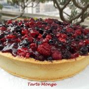 Tarte Monge DSCN9767 (Copy)