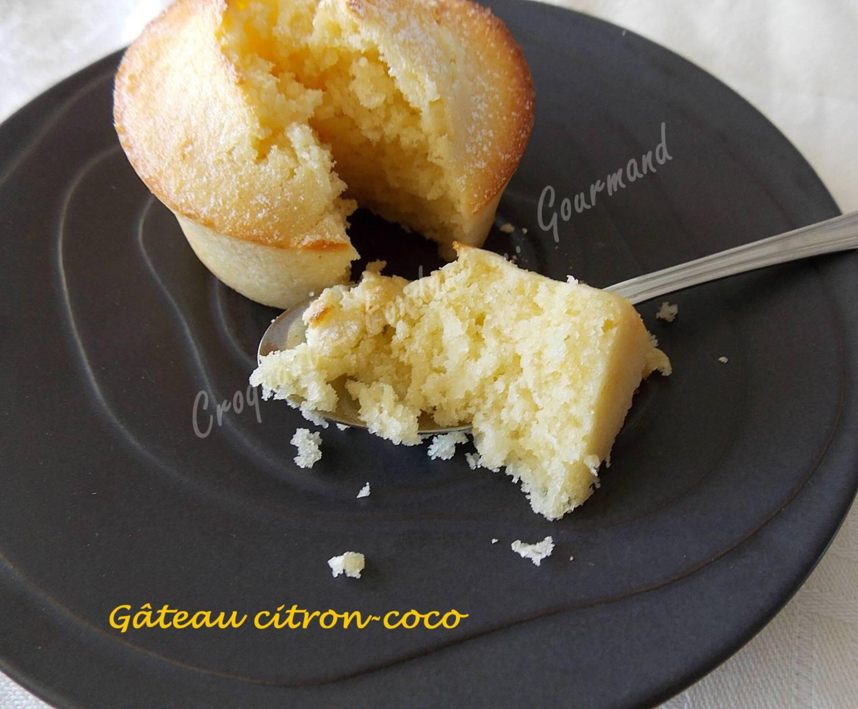 Gâteau citron-coco DSCN0522