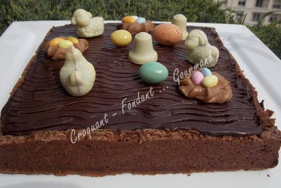 Tarte café-chocolat DSCN3673