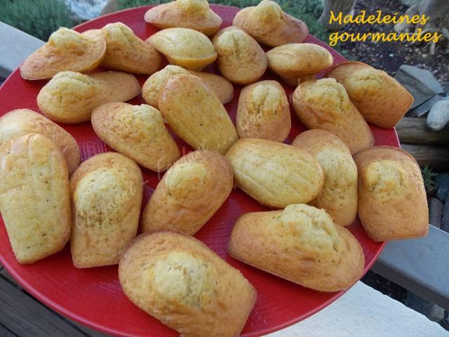 Madeleines gourmandes DSCN8784