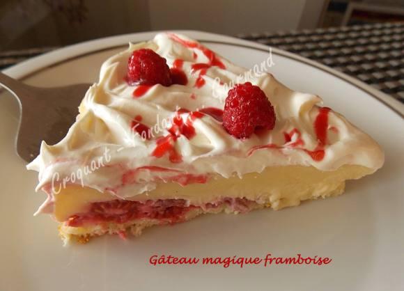 Gâteau magique framboise DSCN0389