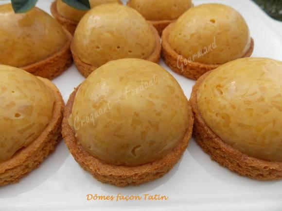 domes-facon-tatin-dscn7187