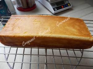 cake-tres-citron-dscn7387