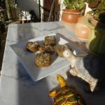 galettes-de-poulet-a-vous-de-jouer-anne-marie-do-07-12-2016