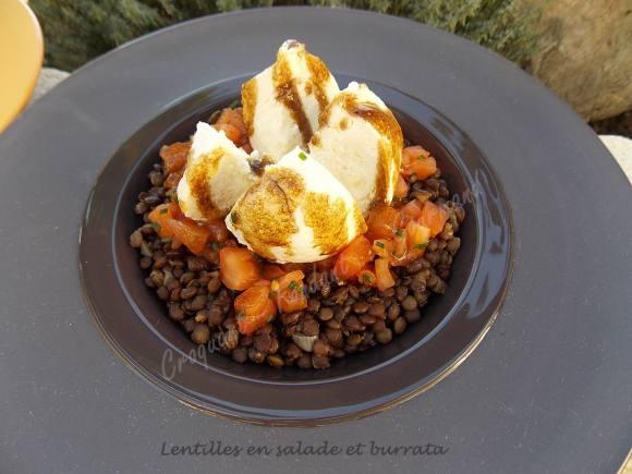 lentilles-en-salade-et-burrata-dscn7629