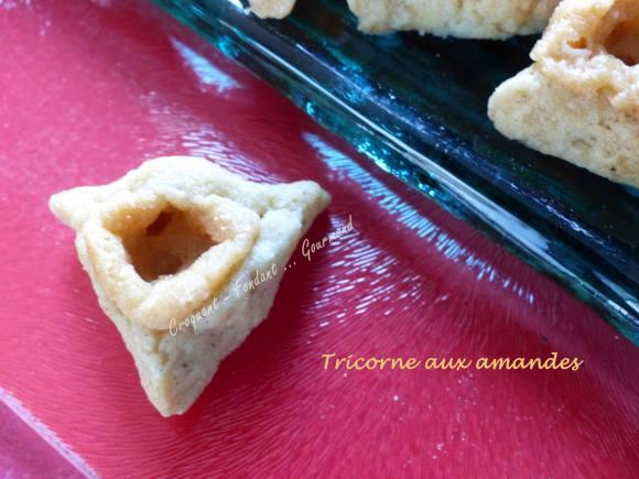 tricorne-aux-amandes-p1000377