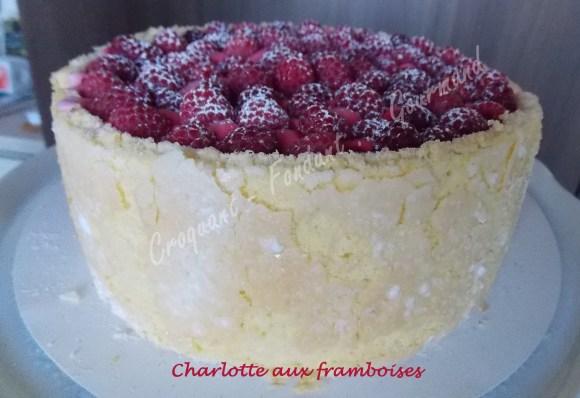Charlotte aux framboises DSCN2808