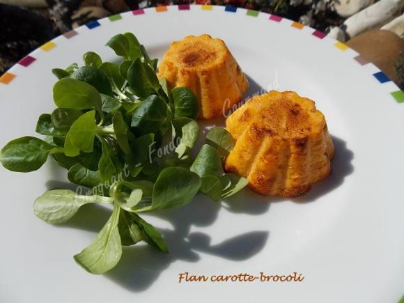 Flan carotte-brocoli DSCN3318