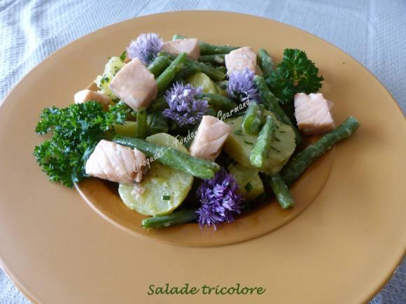 Salade tricolore P1030830