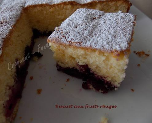 biscuit-aux-fruits-rouges-dscn6146