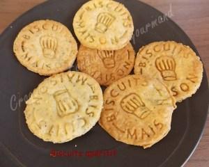 Biscuits apéro -DSCN1494_20763