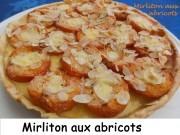 Mirliton aux abricots Index DSCN8884