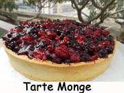 Tarte Monge Index DSCN9767