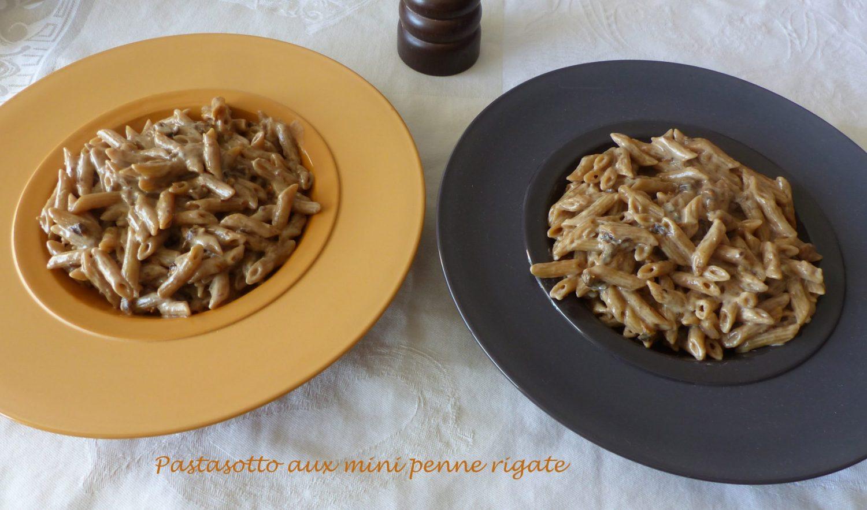 Pastasotto aux mini penne rigate P1080614 R