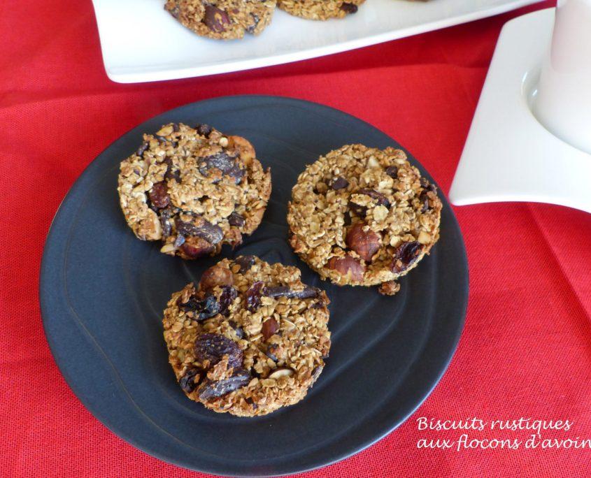 Biscuits rustiques aux flocons d'avoine P1080591 R