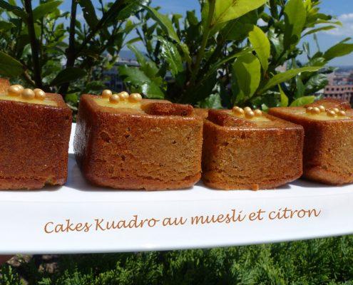 Cakes Kuadro au muesli et citron P1110479 R