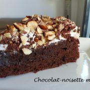 Chocolat-noisette meringué P1060919 R