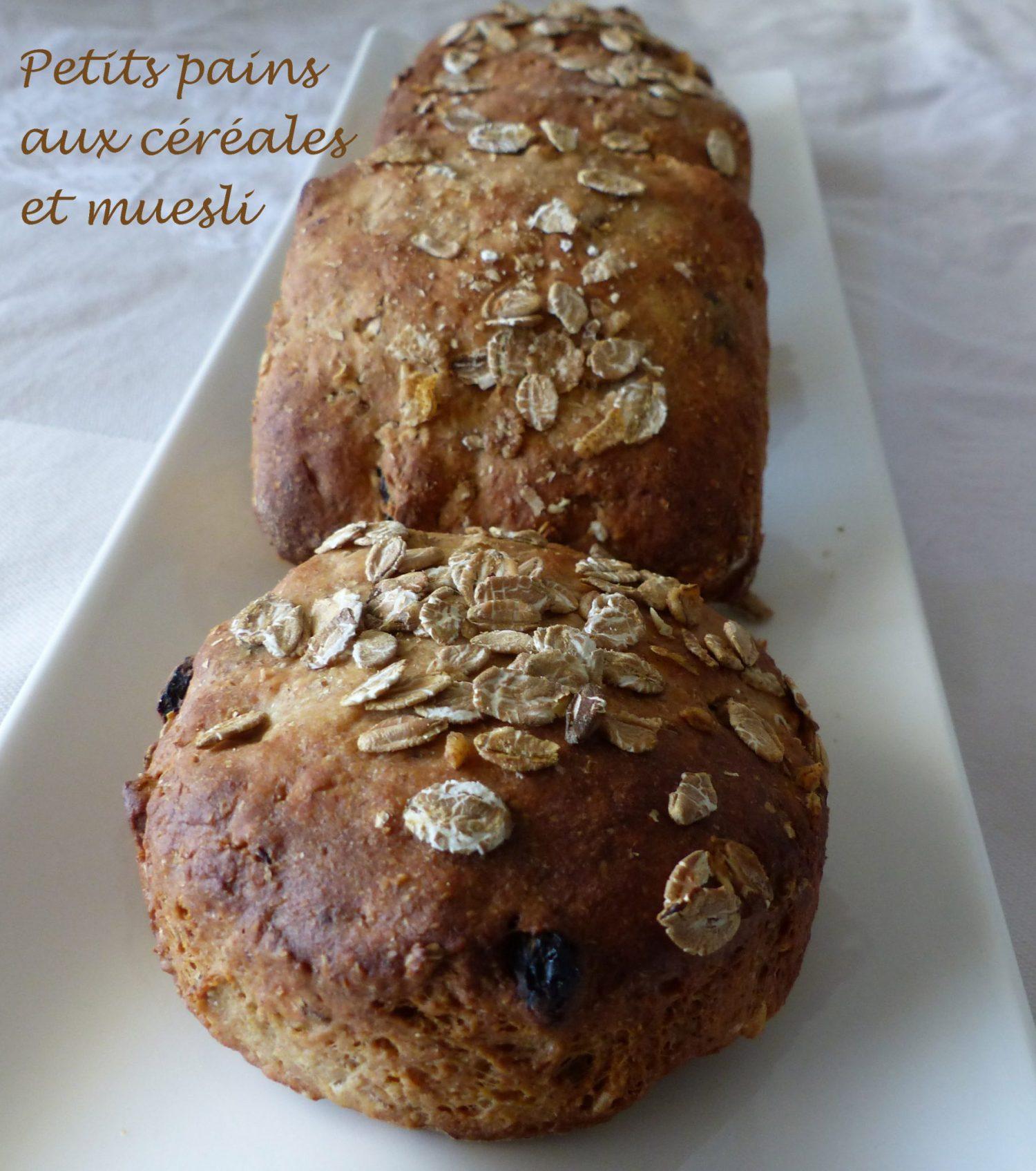 Petits pains aux céréales et muesli P1110488 R