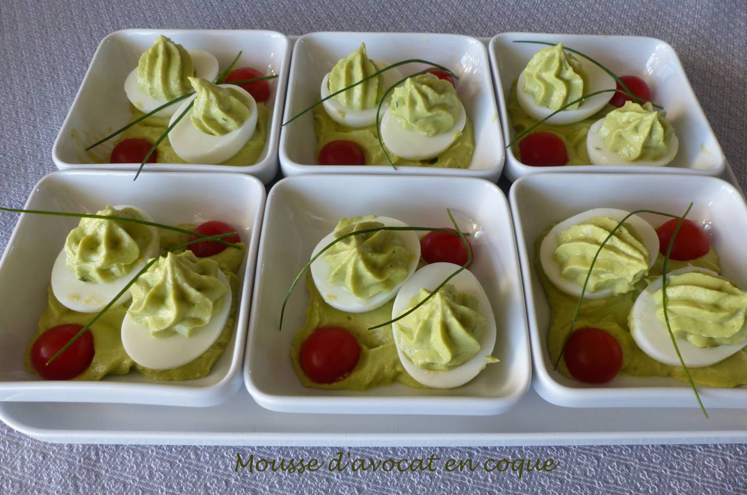 Mousse d'avocat en coque P1220097 R