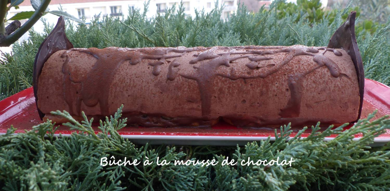 Bûche à la mousse de chocolat P1280031 R