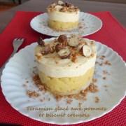 Tiramisu glacé aux pommes et biscuit creusois P1000208 R (Copy)