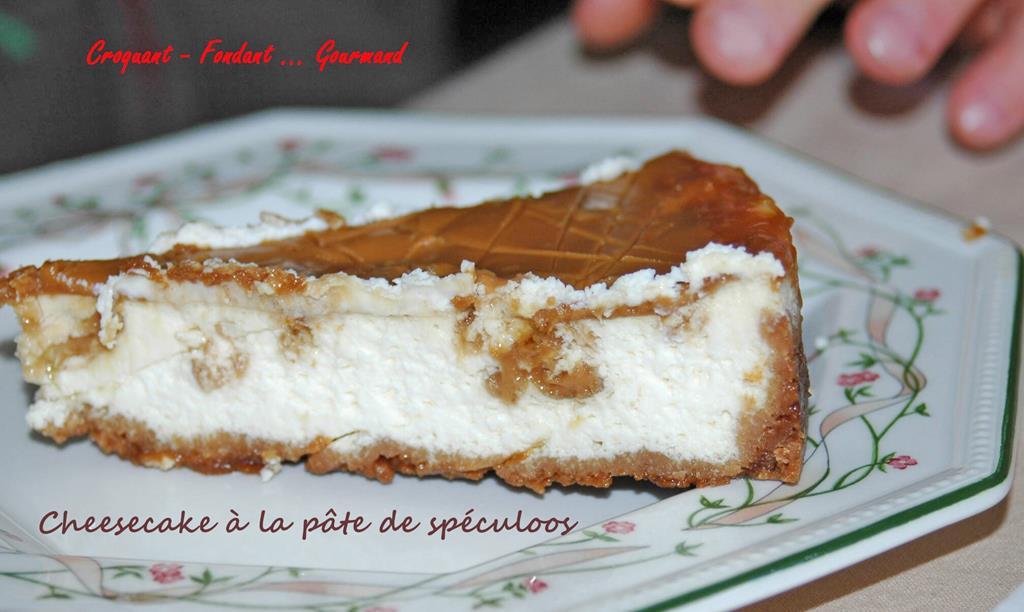 Cheesecake-à-la-pâte-de-speculoos-DSC_3724_1204 R (Copy)