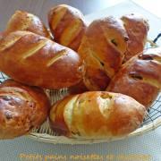 Petits pains noisettes et chocolat P1250237 R