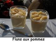 flans-aux-pommes-index-dscn3542