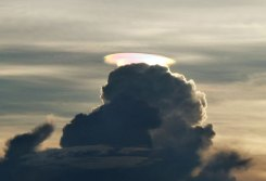 A cloud with a rainbow lining: pileus iridescent cloud