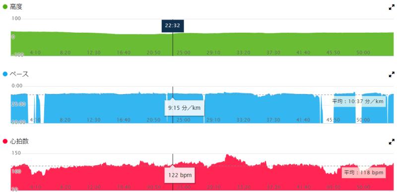 GARMIN CONNECT ウォーキング グラフ