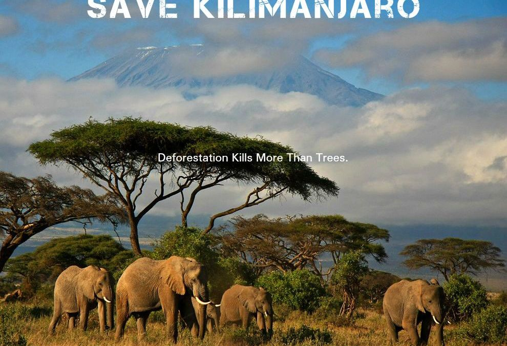 PR Campaign Defends Endangered Planet