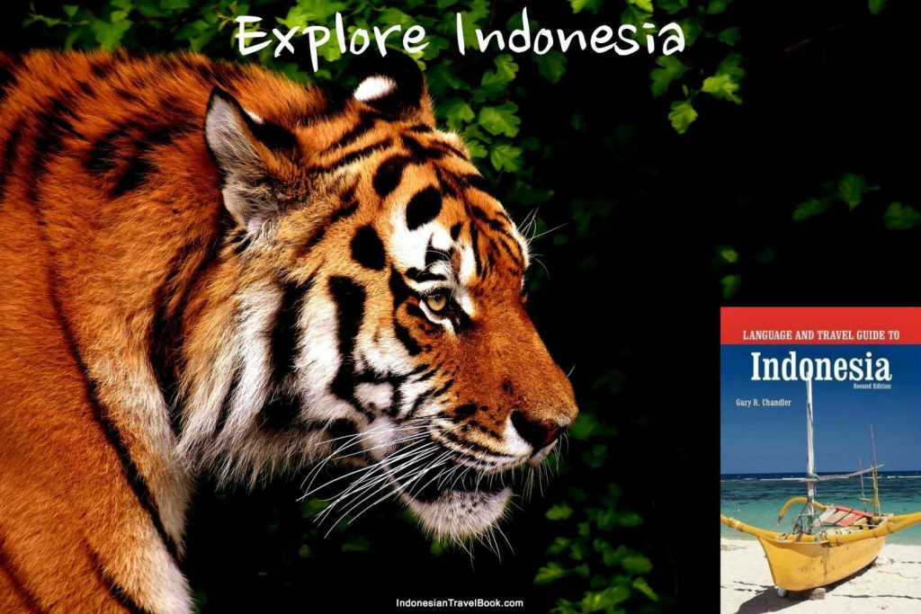 Indonesia tourism campaign
