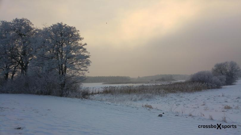 Winter am Weiher
