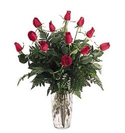 Dozen Red Roses Arranged in a vase