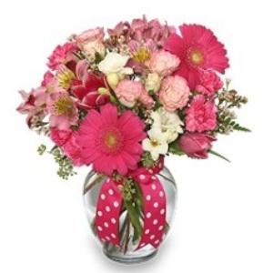gerbera daisy pink vase