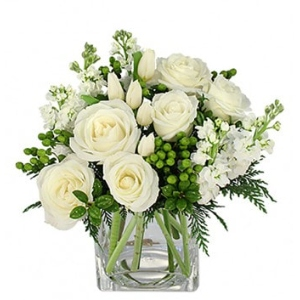 christmas flowers roses white holiday