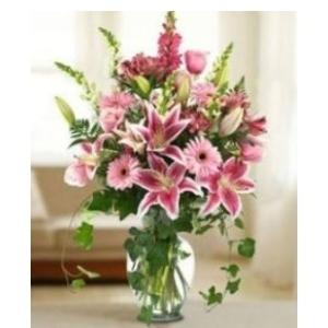 stargazer lily gerber daisy flowers