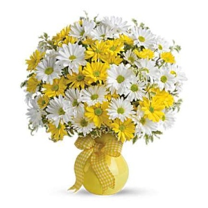 yellow white daisy flowers arrangement