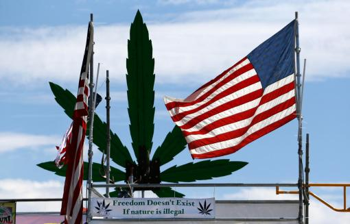 American flag and pot plant