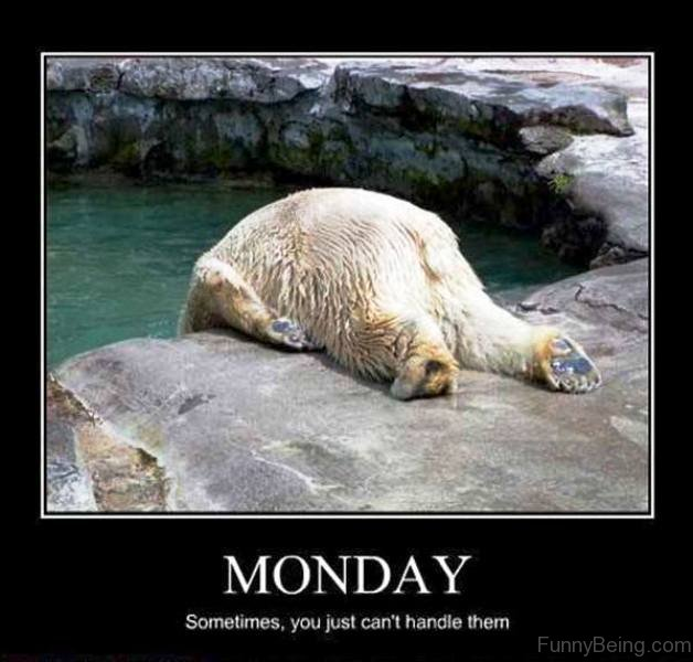 Monday-Sometimes-You-Just-Cant